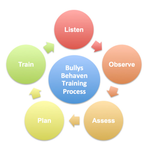 bullys-behaven-dog-training-process